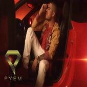 Vámonos von Pyem