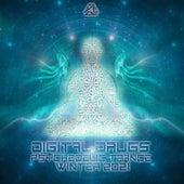 Digital Drugs Psychedelic Trance Winter 2021 de Dr. Spook