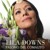 Palomo Del Comalito de Lila Downs