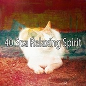 40 Spa Relaxing Spirit by S.P.A