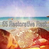 65 Restorative Rest by S.P.A