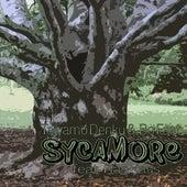 Sycamore by Taiyamo Denku