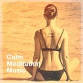 Calm Meditation Music by Calm Meditation, Celtic Meditation Music Specialists, Chakra Meditation Specialists