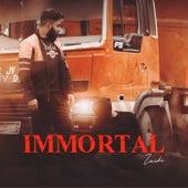 IMMORTAL by Zaidi