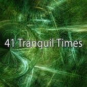 41 Tranquil Times de Japanese Relaxation and Meditation (1)
