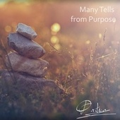 Many Tells from Purpose by Pontino