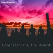 Understanding the Moment by Quies Relaxat