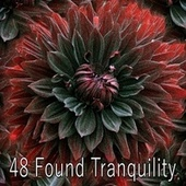 48 Found Tranquility by S.P.A