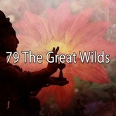 79 The Great Wilds de Zen Meditate