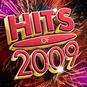 Hits Of 2009 by Various Artists