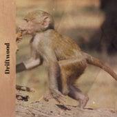 Driftwood de Various Artists