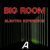 Big Room Electro Experience fra Various Artists