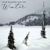 Slow Relaxing Jazz for Winter de Relaxing Instrumental Music