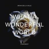 What A Wonderful World (Instrumental Version) de Brian Della Valle