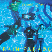 Crashing Dream by Rain Parade