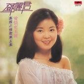 BTB Dao Guo Zhi Qing Ge Di Wu Ji Ai Qing Geng Mei Li (CD) de Teresa Teng