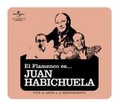 Flamenco es... Juan Habichuela de Various Artists