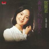 BTB Dao Guo Zhi Qing Ge Di Yi Ji Zai Jian Wo De Ai Ren (CD) de Teresa Teng