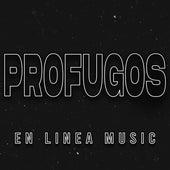 Profugos (Cover) de En Linea Music