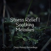 Stress Relief | Soothing Melodies by S.P.A