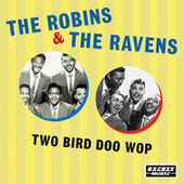 Two Bird Doo Wop by The Robins
