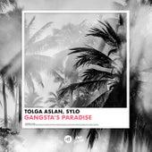 Gangsta's Paradise by Tolga Aslan