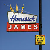 Blues On The South Side von Homesick James