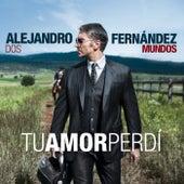 Tu Amor Perdi de Alejandro Fernández