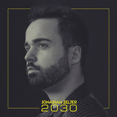 2030 by Jonathan Zelter