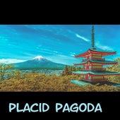 Placid Pagoda by Junk