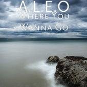 Where You Wanna Go by Aleo
