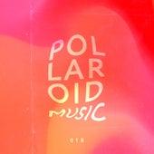 Polaroid Music, Vol. 018 de Various Artists