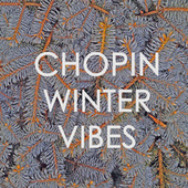 Chopin - Winter Vibes by Frédéric Chopin