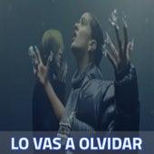 Lo Vas a Olvidar by Rosalia