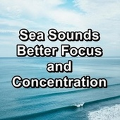 Sea Sounds Better Focus and Concentration di Ocean Sounds Collection (1)