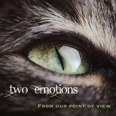 From Our Point of View de Two Emotions