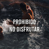Prohibido no disfrutar by Various Artists
