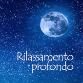 Rilassamento Profondo de Various Artists