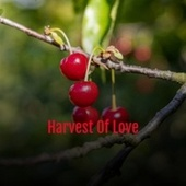 Harvest Of Love by Various Artists