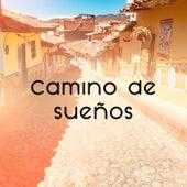 Camino de sueños by Various Artists