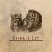 Yishrei Lev de Adriel