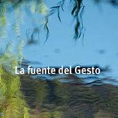La Fuente del Gesto by Various Artists
