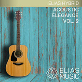 Acoustic Elegance, Vol. 2 by Various Artists