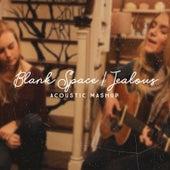 Blank Space / Jealous (Acoustic Mashup) di Megan Davies