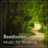 Music for Walking: Beethoven de Ludwig van Beethoven