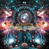 Psychedelic Therapy by Various Artists