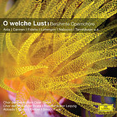 O welche Lust -  Berühmte Opernchöre von Various Artists