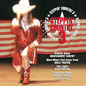 Steppin' Country Volume III von Various Artists