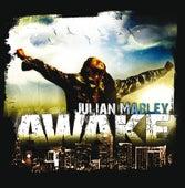 Awake by Julian Marley