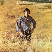 Everything Is Beautiful de John Davidson